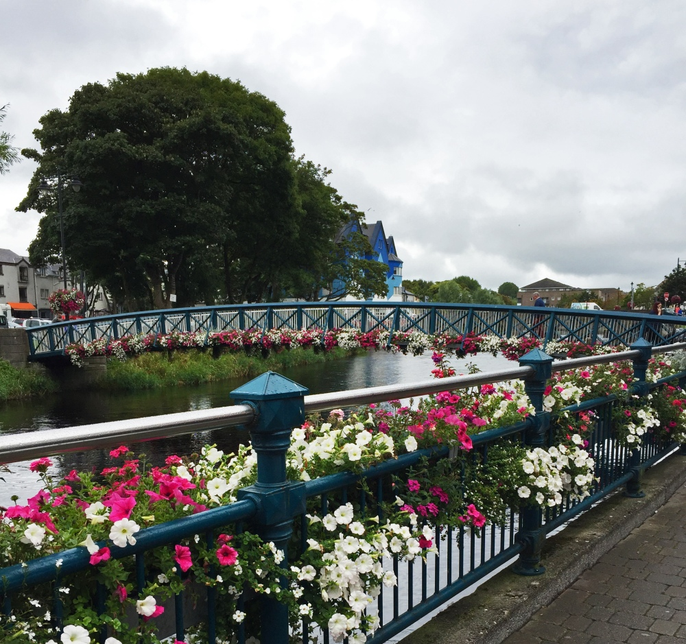 8 sligo flowers on bridge